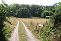 Upottery, entrance to Pamos Farm - geograph.org.uk - 206350.jpg