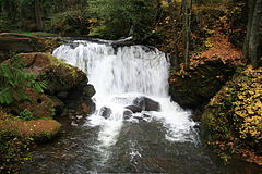 Upper Whatcom Falls-110506.jpg