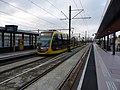 Utrecht Vaartsche Rijn 2021 2.jpg
