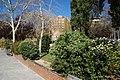 VIEW , ®'s - DiDi - RM - Ð 6k - ┼ MADRID PARQUE MUNICIPAL en MADRID (PEÑUELAS) - panoramio.jpg