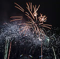 Valentines Day Fireworks 2011 (5444816745).jpg