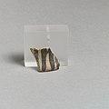 Vase fragment MET DP21519.jpg