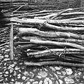 Veje pelje (detajl), Staro selo 1951.jpg