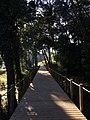 Viana do Castelo (31288995704).jpg