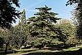 Villa Borghese 06.jpg