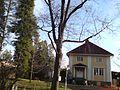 Villa Rounionk-n kiertoliittymän kupeessa - panoramio.jpg