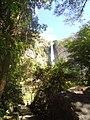 Visão da mata perto da cachoeira.jpg