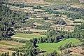 Vista do Miradouro de Santa Bárbara - Almofala - Portugal (50006878297).jpg