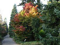 Von Gimborn Arboretum 3