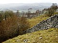 Wall, Near Bell Rake - geograph.org.uk - 362147.jpg