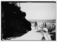 War cemetery ceremony LOC matpc.08256.jpg