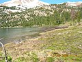 Washington Lake SNRA 2.JPG