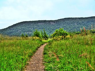 Wawayanda Mountain - Wawayanda Mountain from the Vernon Valley