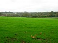 Weald near Horam - geograph.org.uk - 267591.jpg