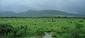 Western Railway - Views from an Indian Western Railway journey on a Monsoon Season (19).JPG