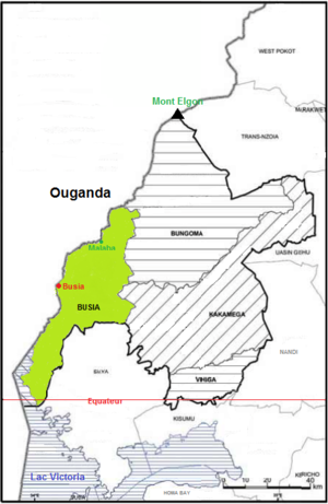 Western counties - Busia.png