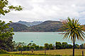 Whangarei Harbour from Deb and Allen's terrace, 3rd. Dec. 2010 - Flickr - PhillipC.jpg
