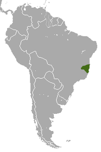 White-headed Marmoset area.png