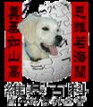 Wiki-dog1.png