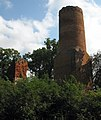 virginia Gartz(Brandenburg)