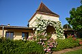 "Wonderful roses at the ""pigeonnerie"" at the holidayhome Saint-Circ-Madelon Lot-Dordogne France - panoramio.jpg"