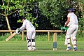 Woodford Green CC v. Hackney Marshes CC at Woodford, East London, England 098.jpg