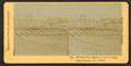World's Fair. Bird's-eye view, looking east, Chicago, Ill., U.S.A, from Robert N. Dennis collection of stereoscopic views.png