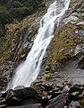 Yakushima waterfalls (4485314867).jpg