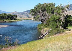 Rzeka płynie obok porośniętych trawą brzegów, drzewa są na środku