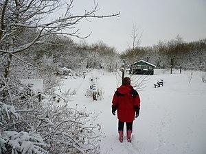 Brynamman - Ynys Dawela Nature Park in the snow January 2010