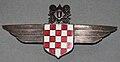 Znak Hrvatske zrakoplovne legije 7706.jpg