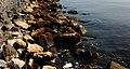 Zomerdijk van basalt blokken. Locatie, IJsselmeerkust bij Laaxum.JPG