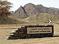 Zone protégée Wadi El-Gemal - panoramio - youssef alam (2).jpg