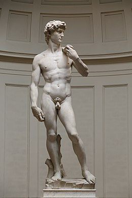 'David' by Michelangelo Fir JBU005.jpg