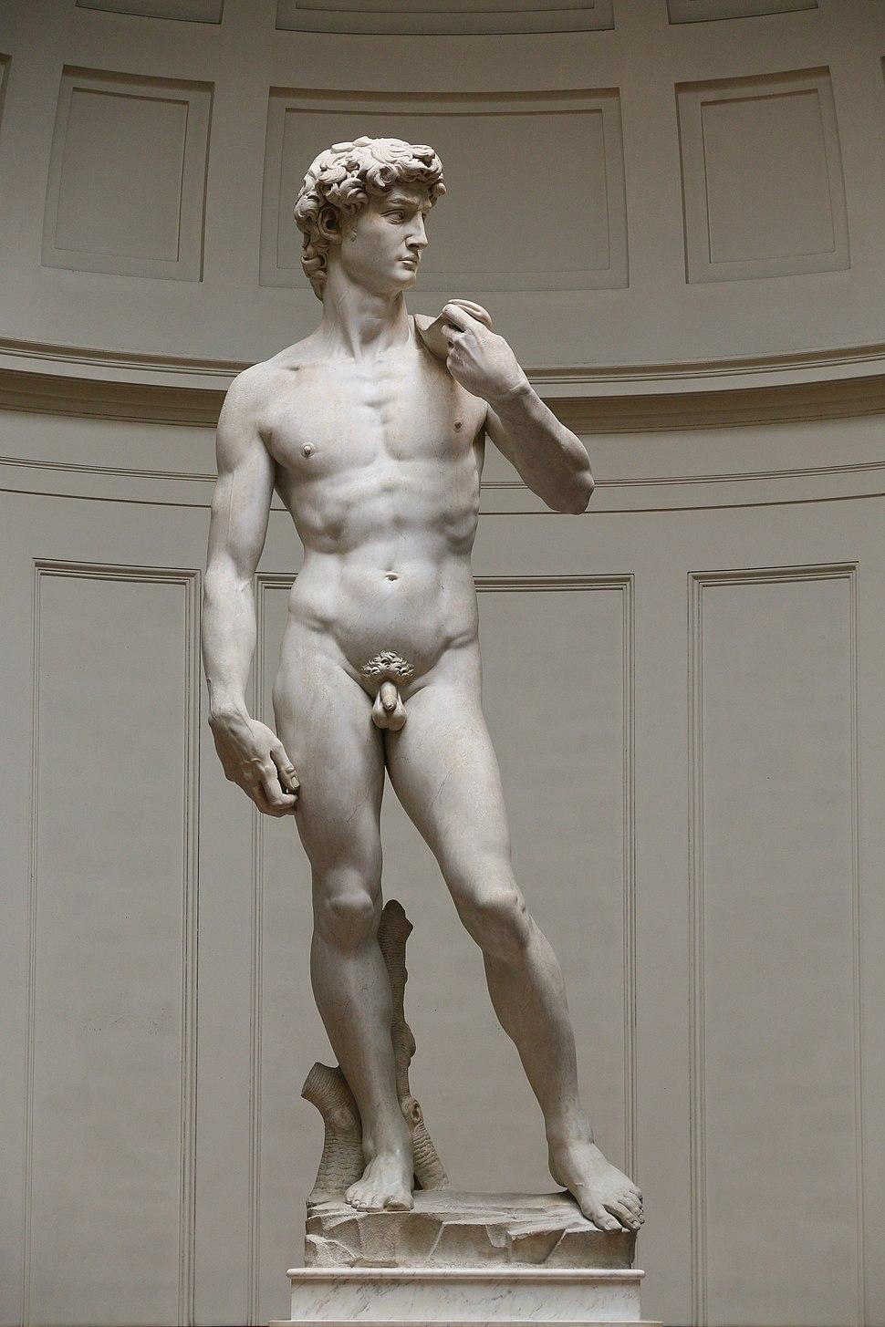 'David' by Michelangelo Fir JBU005
