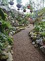 (Jardín Botánico de Quito) b1.JPG