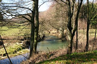 river in Luxembourg and Belgium