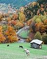 Çağlıyan Köyü Sonbahar.jpg