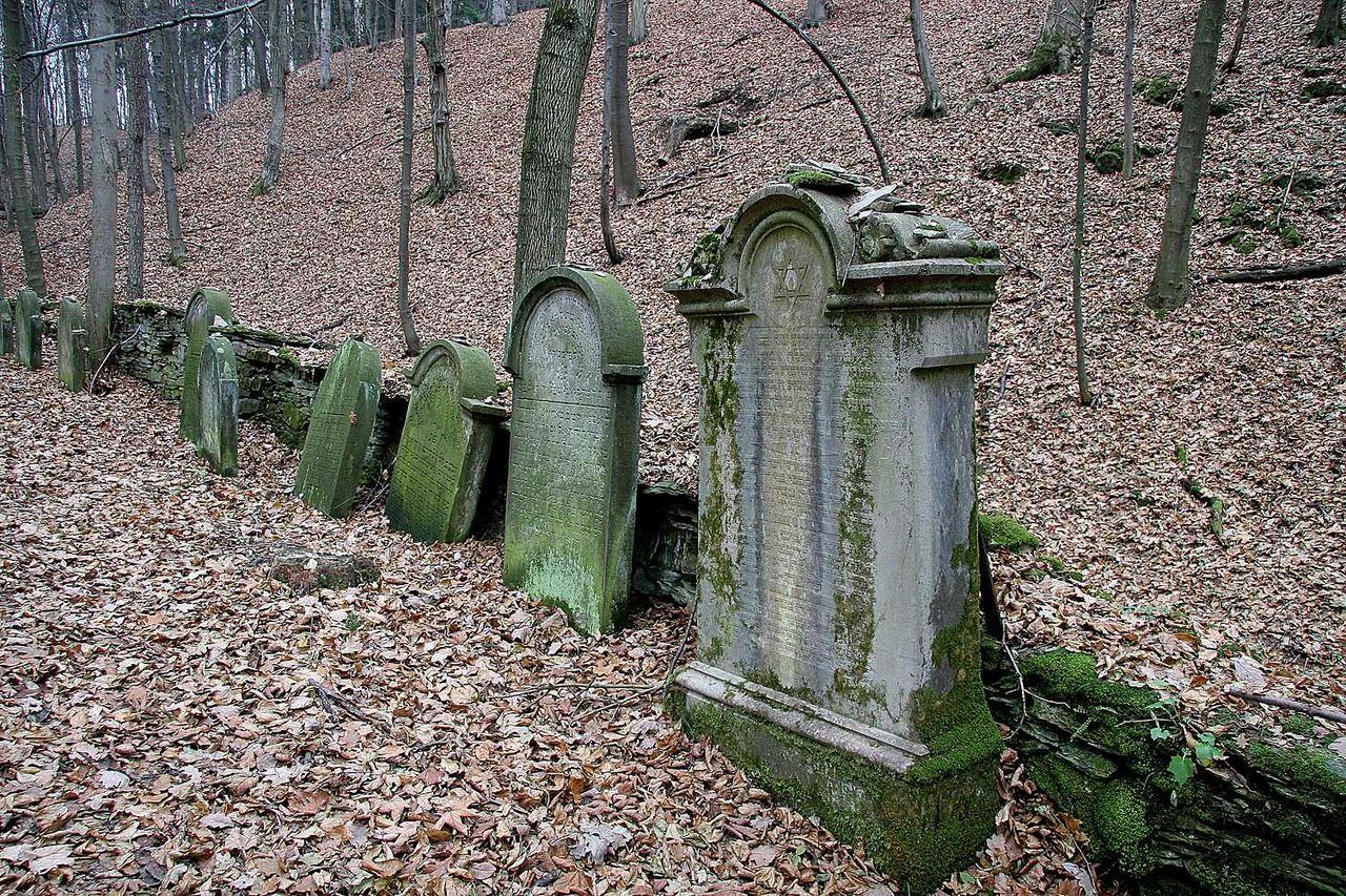 Židovský hřbitov v Podbřezí2.jpg