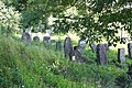 Єврейське кладовище, м. Ланівці.jpg