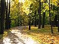 Аллея-парка-07.jpg