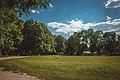 Антонінський парк. 2017рік.jpg