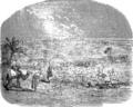 Вирсавия (БЭАН).png
