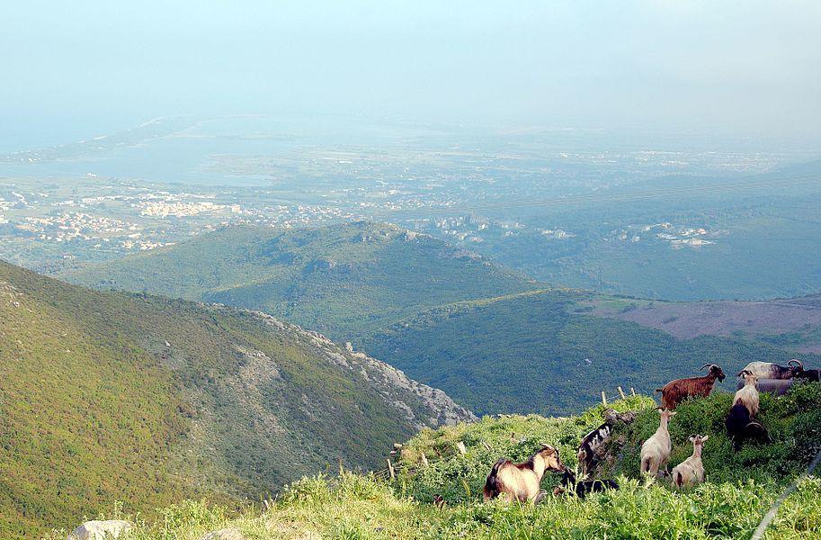В горах Cap Corse