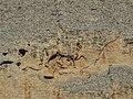 Мадарският конник.jpg