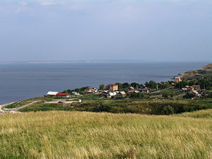 Новодевичье 20050020