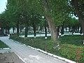 Парк у м. Бібрка ХІХ ст. Стан травень 2013 р. 2.JPG