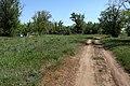Развалины бывшего пионерского лагеря. В южном направлении - panoramio.jpg