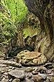Сочинский национальный парк. Свирское ущелье 1.jpg