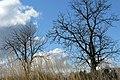 Фото путешествия по Беларуси 520.jpg